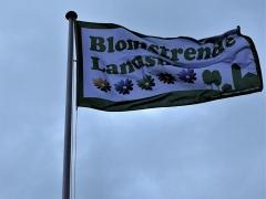 Horne-som-Blomstrende-Landsby.-Her-bliver-3-blomster-til-5-og-buketten-er-fuldtallig-10