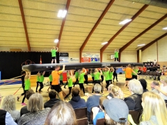 Gymnastikopvinsningen i Horne Hallen 2019 (8)