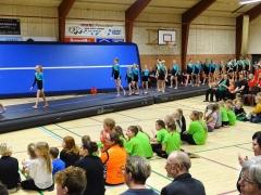 Gymnastikopvinsningen i Horne Hallen 2019 (9)
