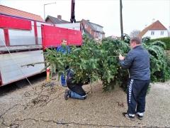 5-Juletræet-får-lyskæder-på-inden-rejsning