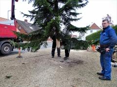 6-Og-så-er-træet-klar-til-opsætning-1