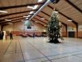 Juletræsfest i Hallen 2016 (4)