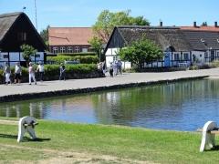 Pensionistudflugten til Samsø 2018 (18)