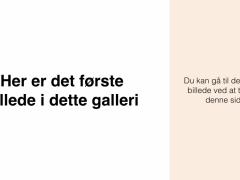 BruggalleriHorne-Varde.001