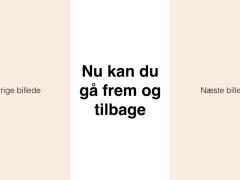 BruggalleriHorne-Varde.002